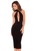 Alejandra Black Halter Backless Bandage Dress