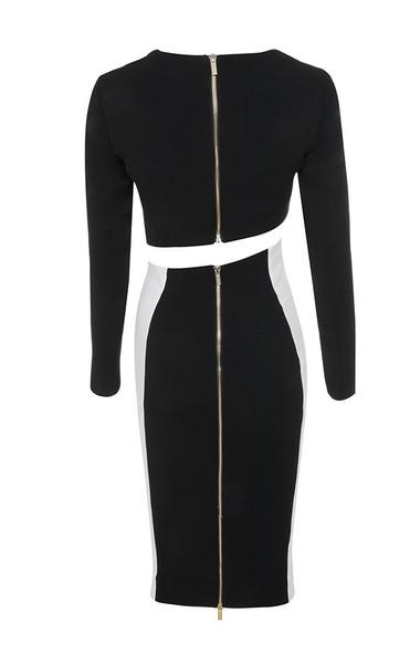 joi dress in black