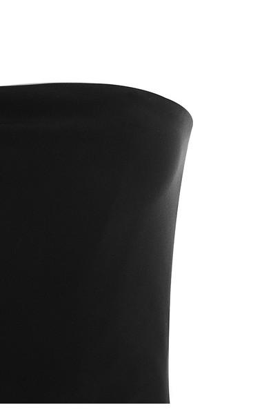 black leonida