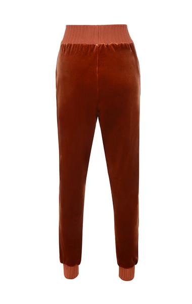 sierra pants in rust