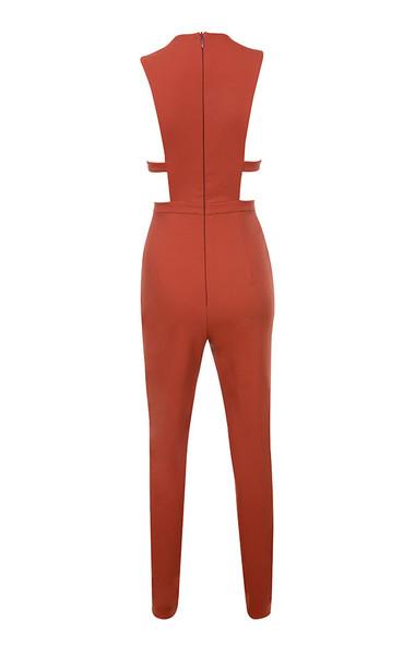 alexis jumpsuit in rust