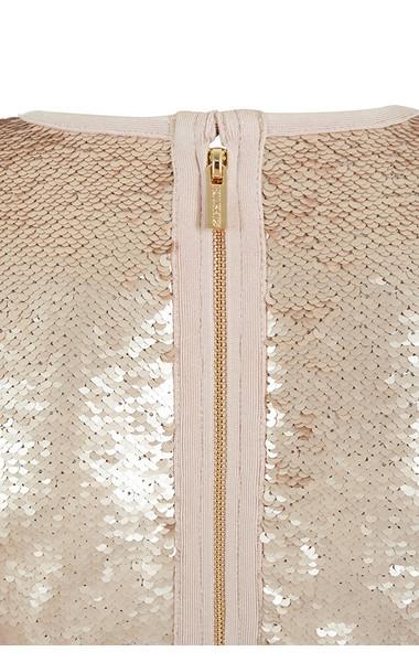 anastasia champagne dress