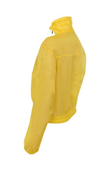 ariya in lemon