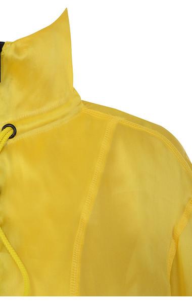 lemon ariya
