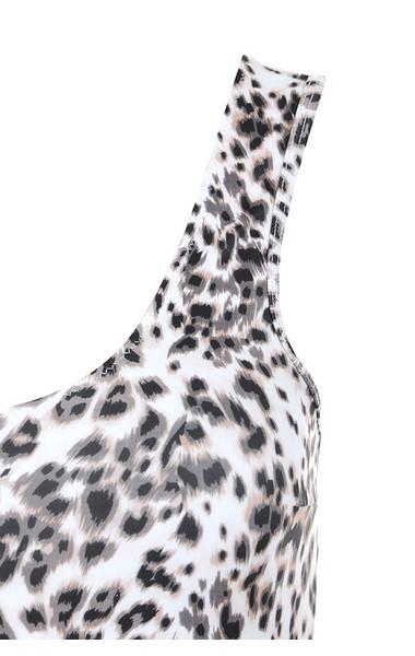 leopard venus