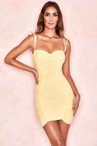 Rosa Lemon Mesh Ruched Mini Dress