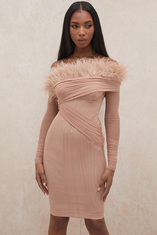 Naira Blush Mesh Corset Dress