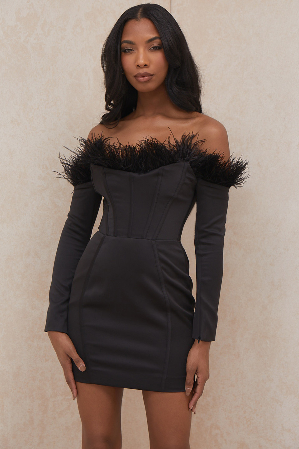Adriana Black Strapless Feather Corset Dress